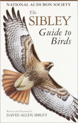 David Allen Sibley: The Sibley Guide to Birds