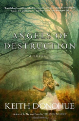 Keith Donohue: Angels of Destruction: A Novel