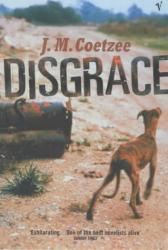 J.M.Coetzee: Disgrace