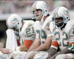 Dolphins72