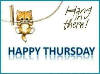 273826-Hang-In-There-Happy-Thursday