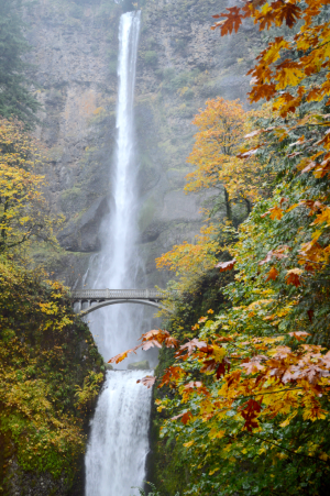 Multfalls641c_26oct16