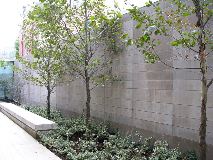 Bloor Gladstone Branch - Reading Garden