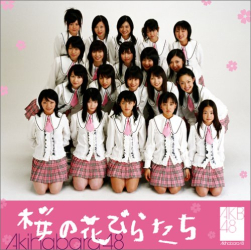 AKB48 - 桜の花びらたち