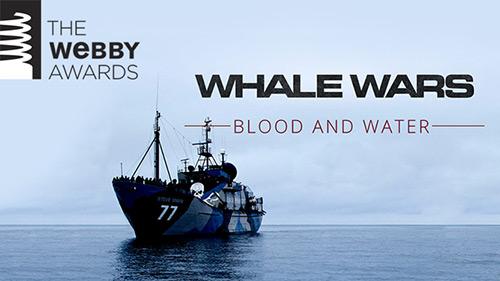 Ww-webby-500w