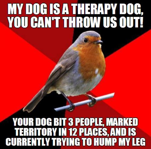 Fake therapy dog
