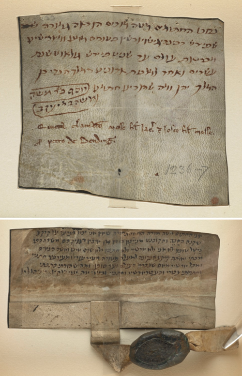 Two of the Anglo-Jewish charters stored at the British Library, the former granting the general release by Mosse son of Jacob, and Jacob son of Mosse, to Peter de Bending, 1236-7 CE (British Library Add Ch 16384, Cotton Ch XXVI 29)