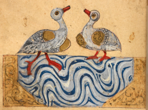 Left (Or.2784, f. 10r): a goose and a duck; right (Or.2784, f. 35v): an Egyptian vulture