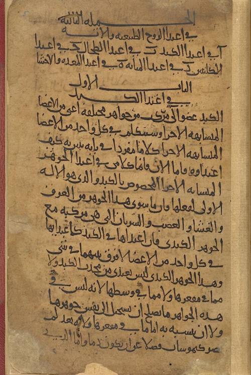 Beginning of chapter 2: on the nourishment of the natural soul and its organs, by Abū Ja'far Aḥmad ibn Muḥammad ibn Abī al-Ash'ath. Copied at Mosul in AD 960 from the author's autograph copy written in Barqī Castle in Armenia in AD 959 (Or 2600, f. 5r)