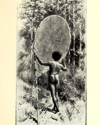 Rear view of a dark-skinned man wearing a loincloth holding a large fishing net