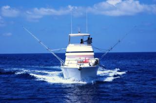 Miami Sportfish Tournament