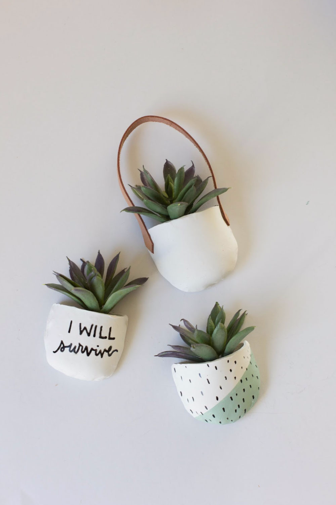 Potted Succulent Magnets via Always Rooney