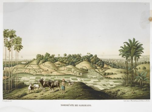 The countryside around Semarang, on the north coast of Java, by Franz Wilhelm Junghuhn. British Library, 1781.a.21, plate 1.