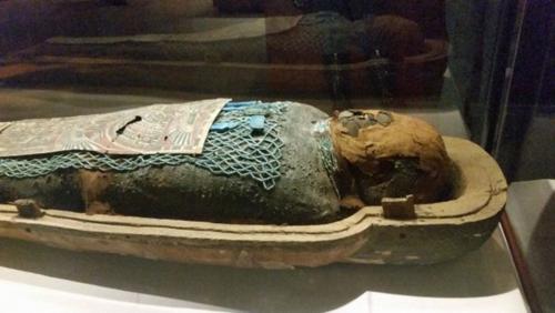 Mummies of the World - Egyptian mummy