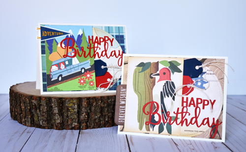 "Happy Birthday Card duo by Wendy Sue Anderson featuring the ""Gone Camping"" Collection by #CartaBellaPaper"