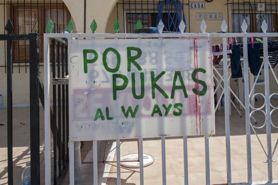 Pets in Spain - Casa Pukas Web