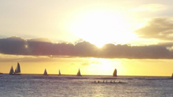 A Tropical Itch is a great companion for a sunset in Hawaii.
