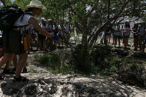 Una rutera da de comer a un cocodrilo en Río Lagartos.