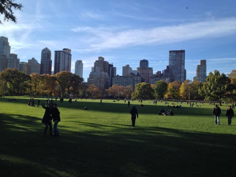 Central Park  November 2016